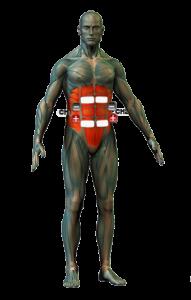 has kezelése elektródapozíciók
