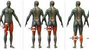 kerékpáros izmok stimulálása, izomstimuláció